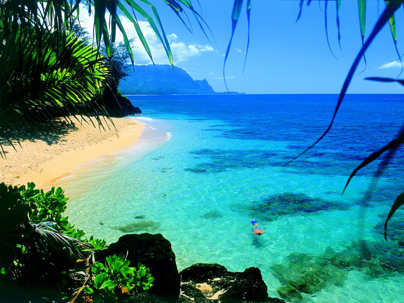 Mein Plan: Abstecher nach Hawaii